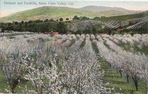 Santa Clara Valley postcard. Courtesy Robin Chapman.